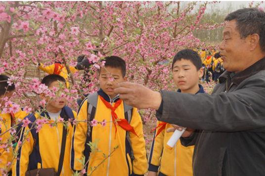 桓台县陈庄小学社会实践课程让学生在体验中成长