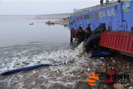 沂水:连续11年开展渔业增殖放流活动 共放流鱼苗9000余万尾