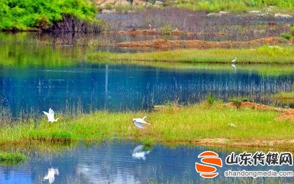 盛夏曲阜九仙山森林美景如画吸引游客