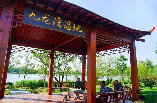 """夏日九龙湾  绝佳好去处  ――西岗镇:践行""""两山""""理论坚持生态优先发展"""