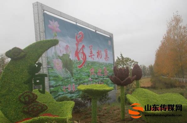郯城县杨集镇美丽乡村建设融入文化元素