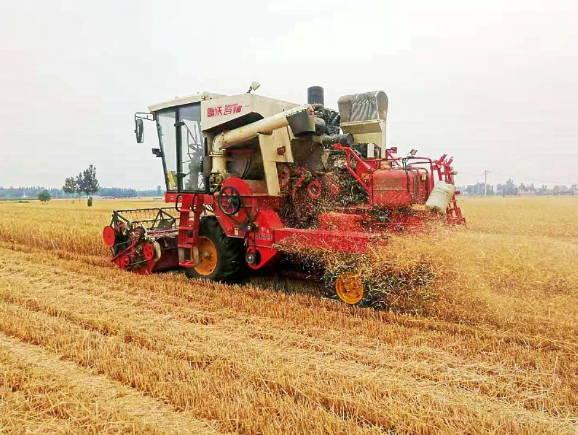 曲阜市农机中心开展小麦机收减损用实招见成效